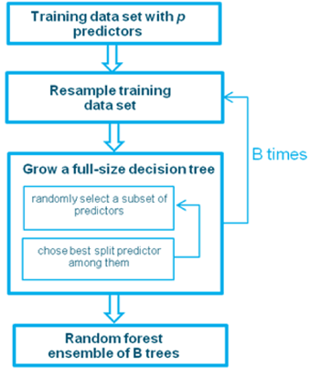 Figure 2: Overview of the training procedure for a Random Forest model
