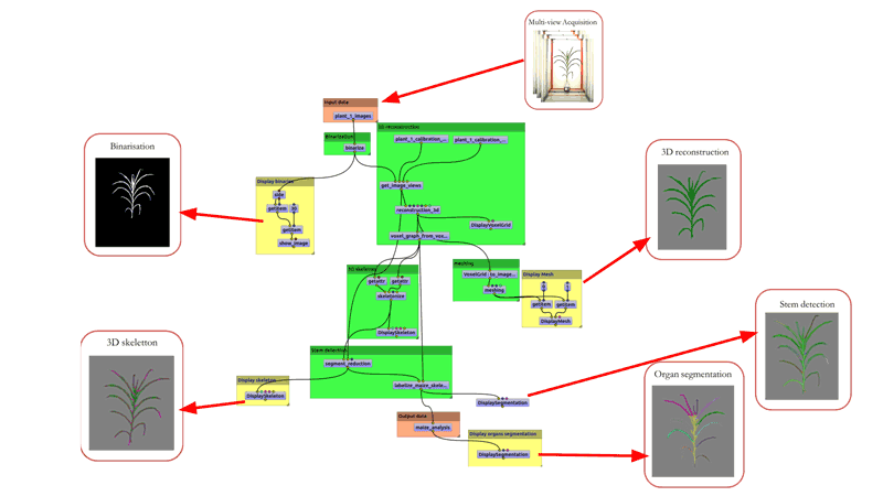 Figure 2: The 3D reconstruction workflow Phenomenal in the OpenAlea visual programming environment is applied to one plant at a given time. The same workflow is run on thousands of plants through time, consuming several terabytes of data, and distributed transparently on the European Grid infrastructure (EGI).