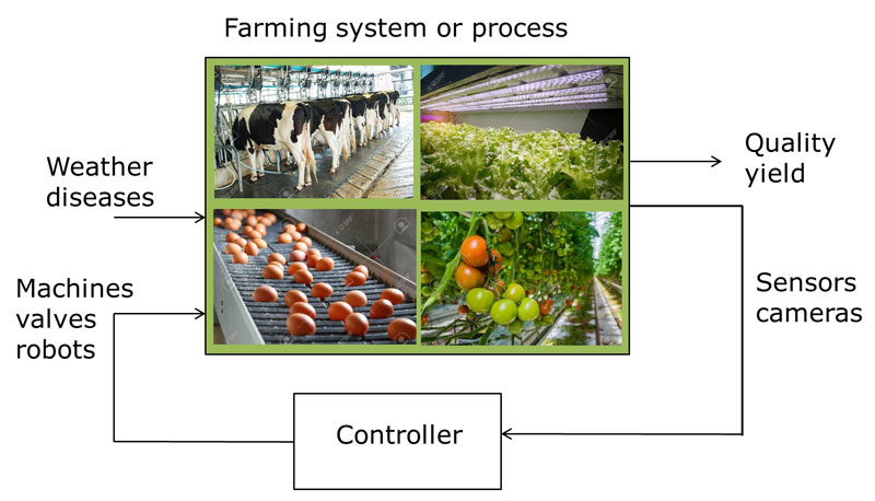 Figure 1: The feedback control loop projected onto some farming processes (source photos: www.123rf.com).