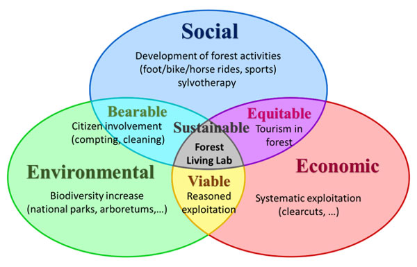 Figure 1: Different means for a sustainable forest.