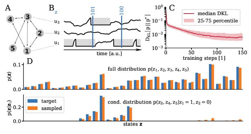 Figure 3: Bayesian inference with spiking neural networks. (A, B) Neuron as spike patterns can be interpreted as binary vectors. (C) Neural dynamics can learn to sample from arbitrary probability distributions over binary spaces (D).