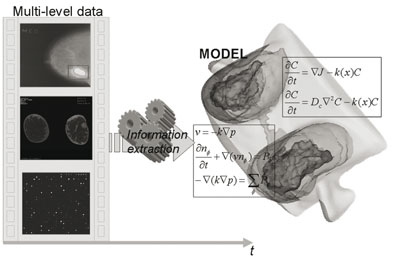 Figure 1: Extraction of multiscale temporal pathophysiological information for computing 'individualized' models of pathophysiology.