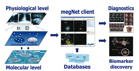 Conceptual approach to data integration and modelling, implemented using the megNet® software. Both statistical and semantic models are utilized to enable systemic integration of data across multiple levels. The platform also enables integration of models and knowledge across multiple species.