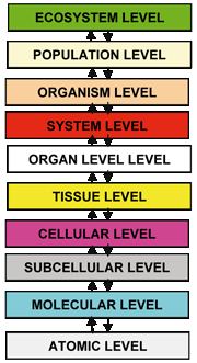 The ten levels of biocomplexity.