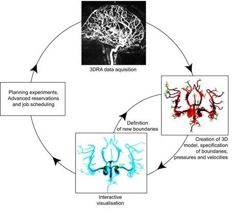 Figure 2:  Workflow diagram of GENIUS clinical 'scenario'.