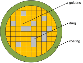 Figure 1: Design of modelled drug.