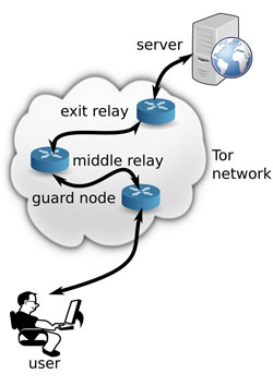 Figure 1: User contacts server through the Tor network.