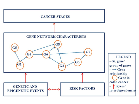 Figure 1:  Interdependencies between the main layers of the Colorectal Cancer Model – Simplified illustration