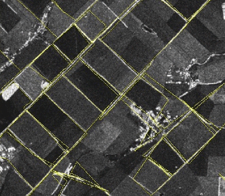 Figure 1: Mosaic (in yellow) overlaid on a Synthetic Aperture Radar image of fields in rural Ukraine.