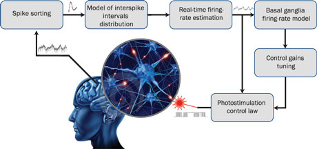 Figure 1: Schematic description of the SynchNeuro strategy. Electrical measurements of single spike recordings in specific brain structures, thanks to permanently implanted electrodes, allow to estimate the firing rate of the whole neuronal population after spike sorting and probabilistic identification. The estimated firing rate is then used off-line to identify the dynamical properties of the neuronal activity and to deduce the optimal tuning of the control gains. It is also used on-line to provide a real-time photostimulation feedback, using optogenetics, to reduce the magnitude of pathological oscillations.
