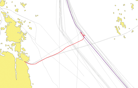 Figure 2: A small fishing boat (red) repeatedly stopped in the middle of the shipping route. It was almost hit by a large freight ship (purple).